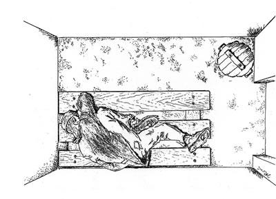 Odinochka (Solitary Confinement Cell) Courtesy of Regina Gorzkowski-Rossi.